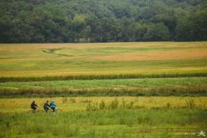 bikingpastfields