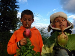 kids-and-radishes1-330x247